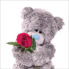 ♥ Tatty Teddy ♥ Rose from Me to You  ♥