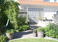 Hemma hos trädgårdsdesigner Cecilia Tidstrand i Viken! - Arkitektens Trädgård