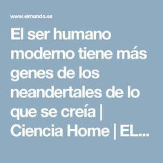 El ser humano moderno tiene más genes de los neandertales de lo que se creía | Ciencia Home | EL MUNDO