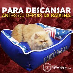 http://www.catmypet.com/caminha-capitao-cat