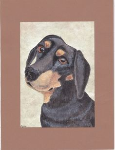Cani in Cornice: Lola