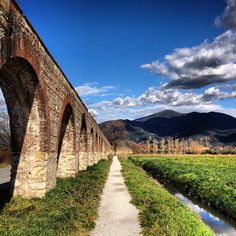 Acquedotto Mediceo di Pisa