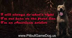 Do you need more info and article about Pitbull GameDog, APBT (Game Dog) Titles, Deep Game, Gamedog History, Interview Legend Kennel, and Video Gamedog ? Visit : www.pitbullgamedog.us