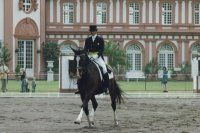 Lots of good tips for dressage position fixes. Love the basketball suggestion for hand position.