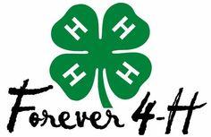Forever 4-H