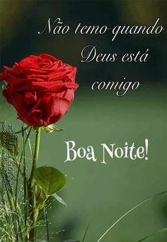 506 Melhores Imagens De Rosas Vermelhas Em 2020 Rosas