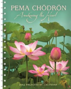 Pema Chodron 2014 Engagement Calendar *** You can get additional details at the image link.