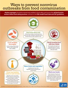 Infected food workers cause about of reported outbreaks from contaminated food. Learn about what the food service industry can do to help prevent these outbreaks in the new CDC Isolation Precautions, How To Stay Healthy, Healthy Life, Healthy Living, Sick Food, Food Service Worker, Food Out, Food Safety, Health Education