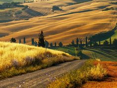 The Best Of The Italian Countryside In Pictures Italy Pictures - Tranquil photos capture the beauty of tuscanys countryside