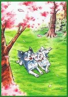 Ginga Densetsu Weed Sakura | Ginga Densetsu Weed Anime Animals, Funny Animals, Kimba The White Lion, The Half Sisters, Minor Character, Anime Films, Bellatrix, White Wolf, All Dogs