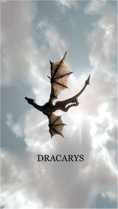 So you are a Game of Thrones Dragons fan? Save this amazing Dracarys Wallpaper to your boards. Hasn't Queen Daenerys Targaryen done a great job at raising her dragon Drogon? Art Game Of Thrones, Dessin Game Of Thrones, Game Of Thrones Tattoo, Game Of Thrones Gifts, Game Of Thrones Dragons, Game Of Thrones Quotes, Game Of Thrones Funny, Game Of Thrones Series, Geek Culture