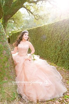 Your house is your castle, and with some do-it-on your own ingenuity it is possible to renovate your house with shocking creativeness. Quince Dresses, 15 Dresses, Pretty Dresses, Pretty Quinceanera Dresses, Quinceanera Themes, Mode Baroque, Quince Pictures, Quinceanera Collection, Quinceanera Photography