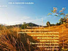 EVANGELIO DE JUAN: VEZ A CANÁ DE GALILEA  Ju 4,45-46