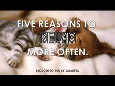 5 Reasons to #Relax More Often by Maid Pro Tulsa, OK via slideshare