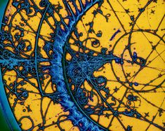 Who says science isn't beautiful?