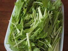 水菜が長持ち*我が家の保存方法の画像