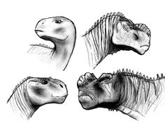 I just did a rewatch of one of my favourite childhood-movie, the Dinosaur (2000) (and realized I still like it, probably even more than I did) and decided to draw the four main characters from it, ...
