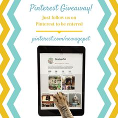 We're hosting a contest this week! By following us on Pinterest, you're automatically entered to win a New Age Pet HiLo Adjustable Double Diner! Share this with your friends so they can be entered to win too! #contest #newagepet