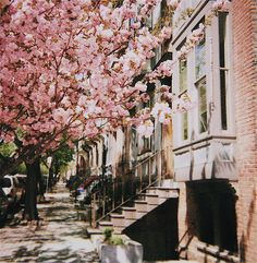Boston <3 looks like the painting on my wall