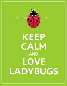 Keep calm and love ladybugs!