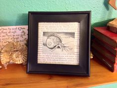 Framed Hermit Crab Print from a 1950s Science Book by DatCoolKat
