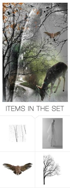 """Lonely path"" by jojona-1 ❤ liked on Polyvore featuring art"