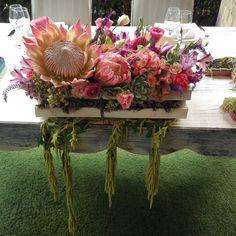 #flowerdesign #centerpiece #ezflowerdesign #suculove #centrodemesa #mesadenovios #protea #wedding #alcachofaservices #love