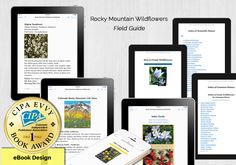 First Place Award - eBook Design for Rocky Mountain Wildflowers Field Guide, Rocky Mountains, Wild Flowers, Web Design, Books, Livros, Design Web, Livres, Book