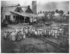 Indentured Indian labourers at Spring Garden Buildings. Jamaica, 1880. Catalogue reference: CO 137/497/29 folio 519. (Photo: British National Archives)