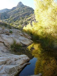 Romero Canyon in the fall In the Catalina Mountains near Tucson