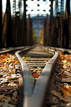 This image uses a down-low perspective to give a sense of feeling small. The image also has leading lines being the train tracks that lead off in the distance. Also the background is blurred which draws your attention to the foreground more.