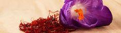 Undeniable Health Benefits of The Priceless Spice – Saffron #Health #Benefits #Spice #Saffron #Foodzu Shop Saffron Here : https://www.foodzu.com/