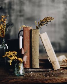 the art of slow living Still Life Photography, Book Photography, Perspective Photography, Photography Portfolio, Old Books, Vintage Books, Flatlay Instagram, Photos Amoureux, Book Aesthetic