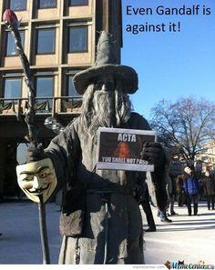 Even Gandalf Is Against It!     #Meme #FunnyMeme