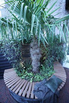 Jungletuin in Amsterdam (deel 2) - Eigen Huis en Tuin Backyard, Patio, Peaceful Places, Garden Seating, Dream Garden, Garden Inspiration, Amsterdam, Exterior, Balcony