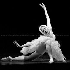 Swan. Irma Nioradze (© Nikolay Krusser).