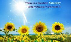 #goodmorning #happysaturday #saturday #saturdaymorning #weekend #HappyWeekend