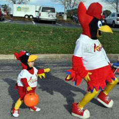 Fredbird Jr chasing Fredbird's tailfeathers....our child will have this costume someday..how cute!