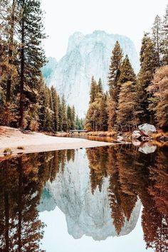 The 33 Most Beautiful Places In America Before You Die + Budget Travel Portofolio Fotografi Pemandangan Alam – Yosemite-Nationalpark Beautiful World, Beautiful Places, Beautiful Pictures, Trees Beautiful, Amazing Places, Heart Pictures, Wall Pictures, Beautiful Gorgeous, Landscape Photography