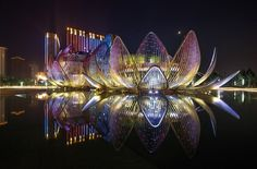 Melbourne-based architecture firm studio505 has designed and completed the Lotus Building and People's Park that's located in Wujin, China.