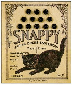 Love this cat's pose.   Snappy Dress Fasteners