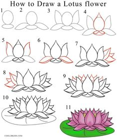 How to Draw Lotus Flower Step by Step Drawing Tutorial with Pictures| Cool2bKids