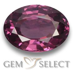 GemSelect features this natural untreated Rhodolite Garnet from Mozambique. This Red Rhodolite Garnet weighs 1.1ct and measures 7.1 x 5.2mm in size. More Oval Facet Rhodolite Garnet is available on gemselect.com #birthstones #healing #jewelrystone #loosegemstones #buygems #gemstonelover #naturalgemstone #coloredgemstones #gemstones #gem #gems #gemselect #sale #shopping #gemshopping #naturalrhodolitegarnet #rhodolitegarnet #redrhodolitegarnet #ovalgem #ovalgems #redgem #red