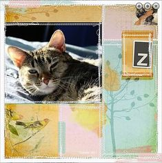 Messy Stitching is the focus of this versatile layered template! It includes space for up to 6 photos, messy stitched rectangles, labels and doodledo brushwork and text paths all in position so all you have to do is add your photos, paper and Cat Sketch, 6 Photos, Project Life, Digital Scrapbooking, Dog Cat, Layout, Templates, Stitch, Cats