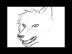 How to draw Wolf head (easy)