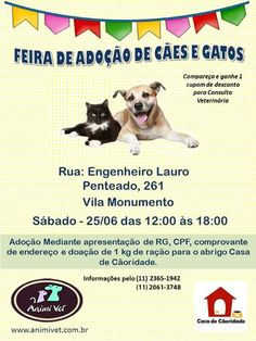 BONDE DA BARDOT: SP: Adote seu melhor amigo na Animi Vet, na Vila Monumento, neste sábado (25/06)