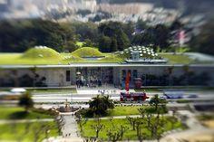 California Academy of Science, San Francisco