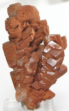 Orange Calcite Crystal Tree Mineral Specimen by FenderMinerals,