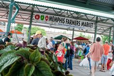 The Memphis Farmers Market is to:  Improve public health nutrition options by providing a vehicle to educate the community on nutrition and good health Provide access to local food choices Assist area farmers,  producers, and artisans with sustainable business opportunities  Generate a sense of local pride while furthering the economic development of our community Serve as a community-gathering place
