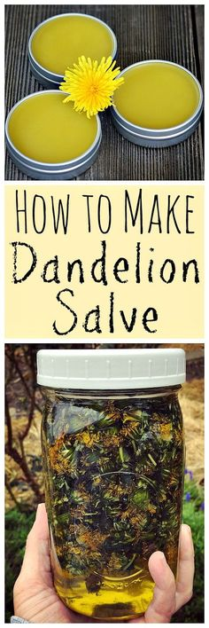 When dandelions are blooming make this healing dandelion salve! When dandelions are blooming make this healing dandelion salve! Healing Herbs, Natural Healing, Natural Medicine, Herbal Medicine, Health Remedies, Herbal Remedies, Limpieza Natural, Salve Recipes, Do It Yourself Baby